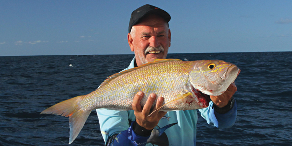 Trip from bribie to yeppoon bnb fishing Fish for jobs