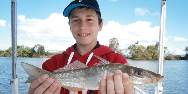 Tips For Targeting Whiting On Lures