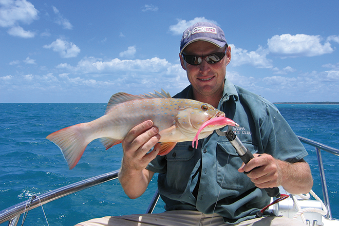 Cape York Fishing Options