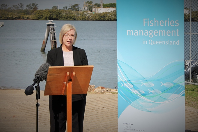 Have your say on Queensland's fisheries reform