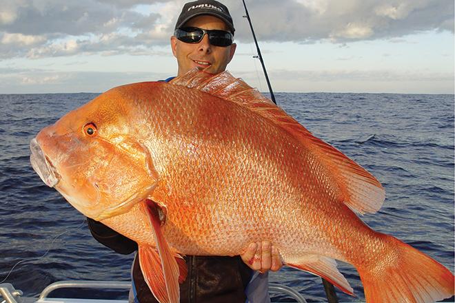 Recipes red emperor fish - Food fish recipes