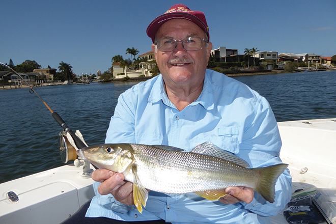Tips for big summer whiting bush 39 n beach fishing magazine for Whiting fish picture
