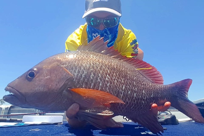 Nick Hamilton with the 50cm mangrove jack he caught recently on a Z-Man soft plastic.