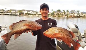 mangrove jack anglers tournament 3