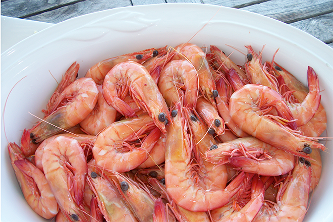 review of import conditions for prawns