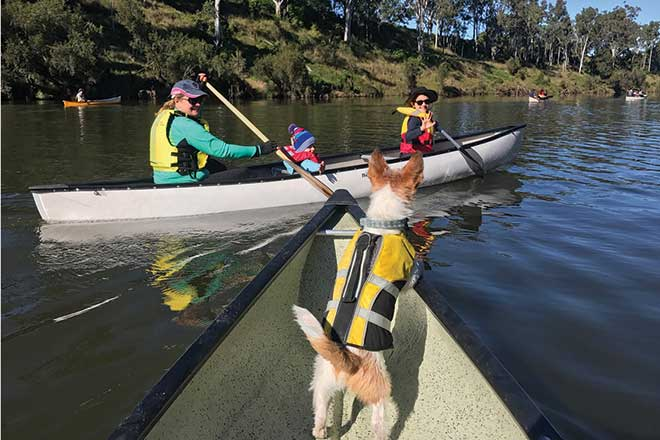 paddling upper brisbane river
