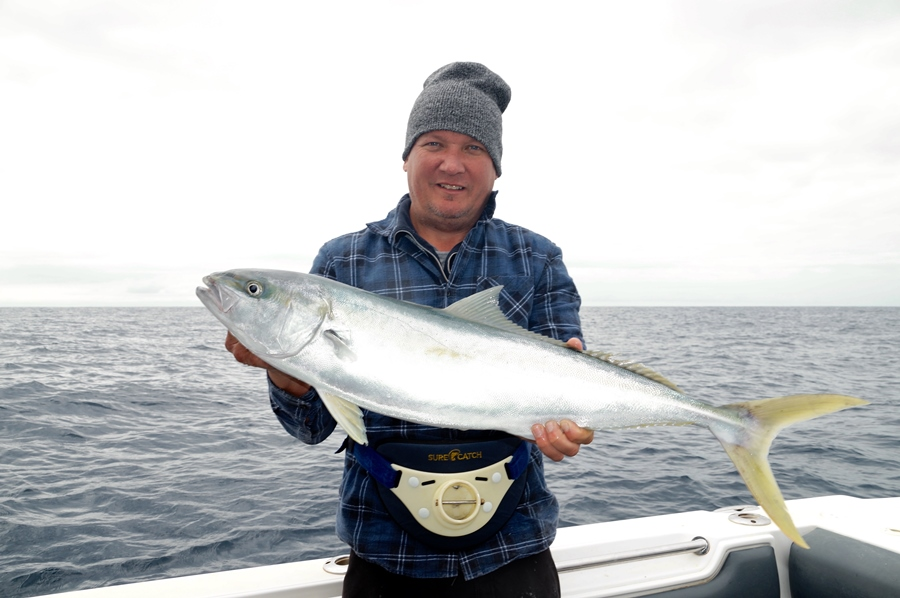 fishing offshore kingfish