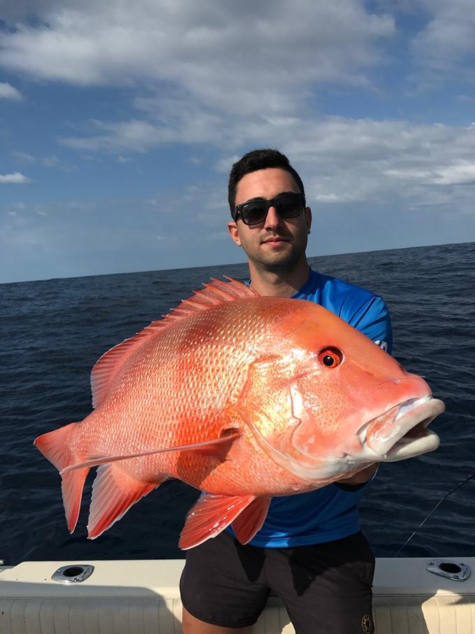 bunker group reefs red emperor