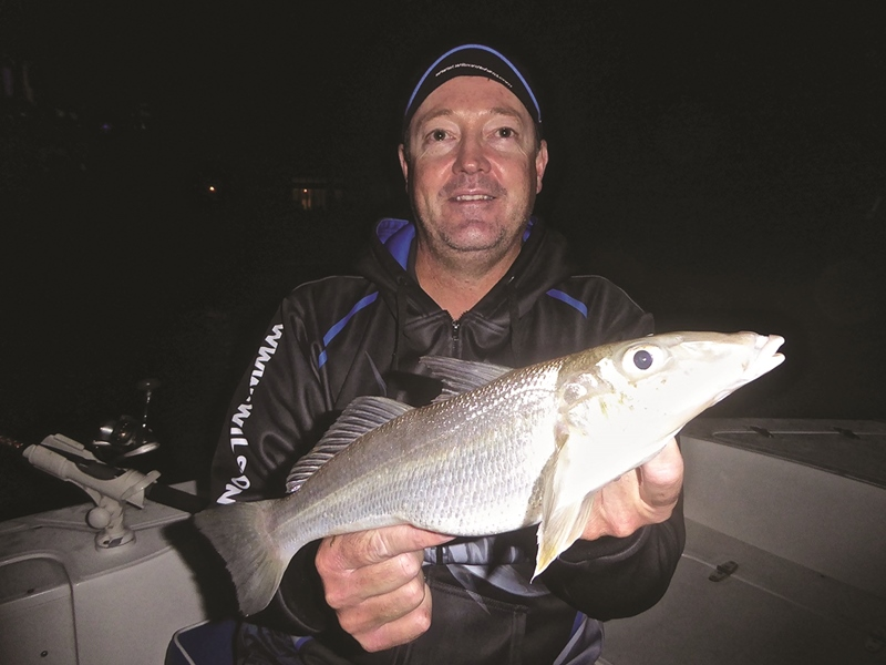 gold coast snapper and gold coast whiting