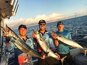 moreton island fishing wahoo