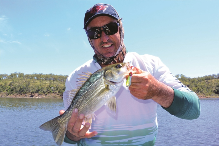freshwater fishing south burnett bass