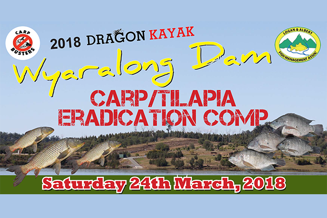 wyaralong dam pest fish eradication comp