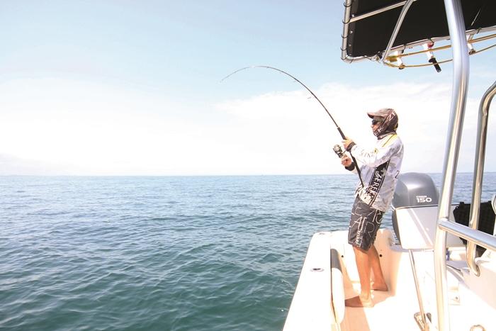 moreton bay tuna