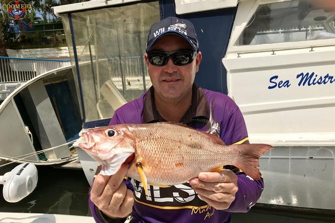great weather gold coast fishing
