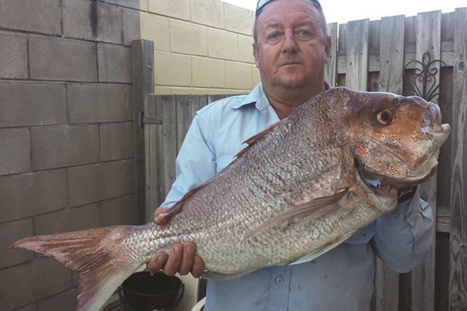 Tackling Moreton Bay tailor and snapper