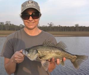 fishing patterns in south burnett