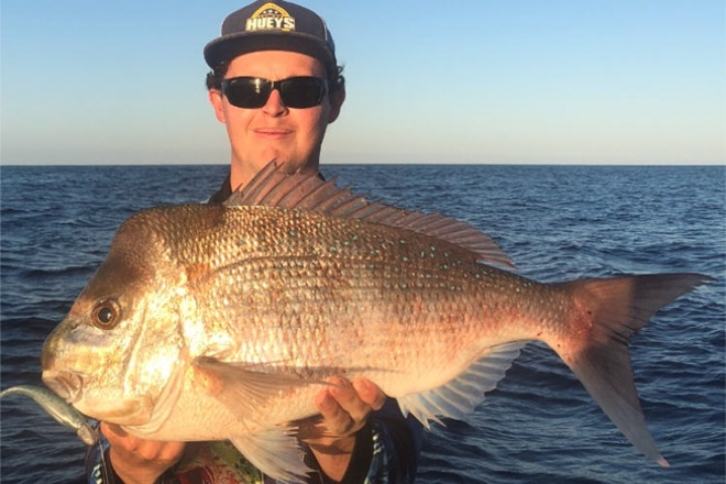unreal snapper bundaberg
