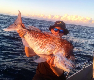 brisbane snapper season