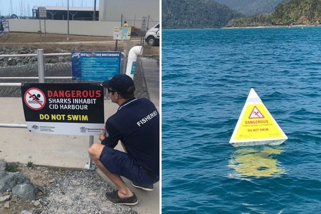 'Do not swim' warning signs and buoys in place at Cid Harbour