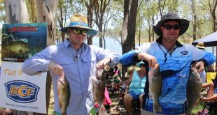 yellowbelly inland fishing comp