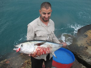 land-based game fishing iluka tuna