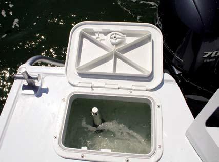 Plumbed live bait tank as standard.