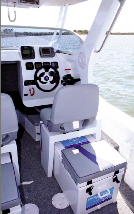 The helm position with optional Esky.