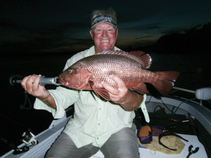 The author trolled up this jack on a pink Digga lure at night in the Nerang River.