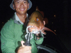 Johnny Chow landed this great jack by trolling one of the author's Digga lures in the Tweed River.