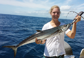 A spanish mackerel landed on a Wild Thing 2 charter out of Noosa.