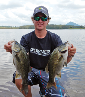 The author caught these bass on a Cultiva Zip 'n Ziggy.