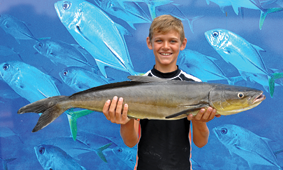 Eleven-year-old Jack Anning won the $50 Davo's Fish of the Week prize with his first-ever cobia; a 5kg specimen from Sunshine Reef. Photos: www.fishingnoosa.com.au