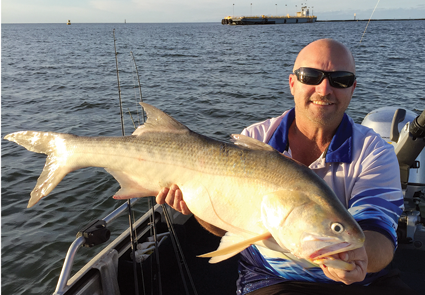 Chris Stratford with a terrific threadfin from the mouth of the Brisbane River.
