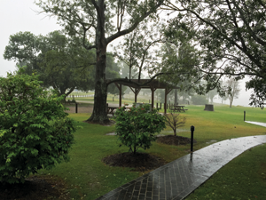 Gloomy weather didn't dampen the author's spirits.
