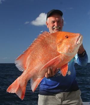 Almost 20kg of red emperor landed east of Heron Island.