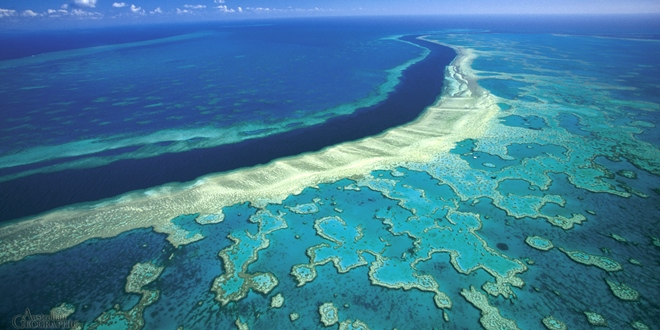 great barrier reef zone