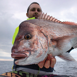 JB with a solid Gold Coast snapper.