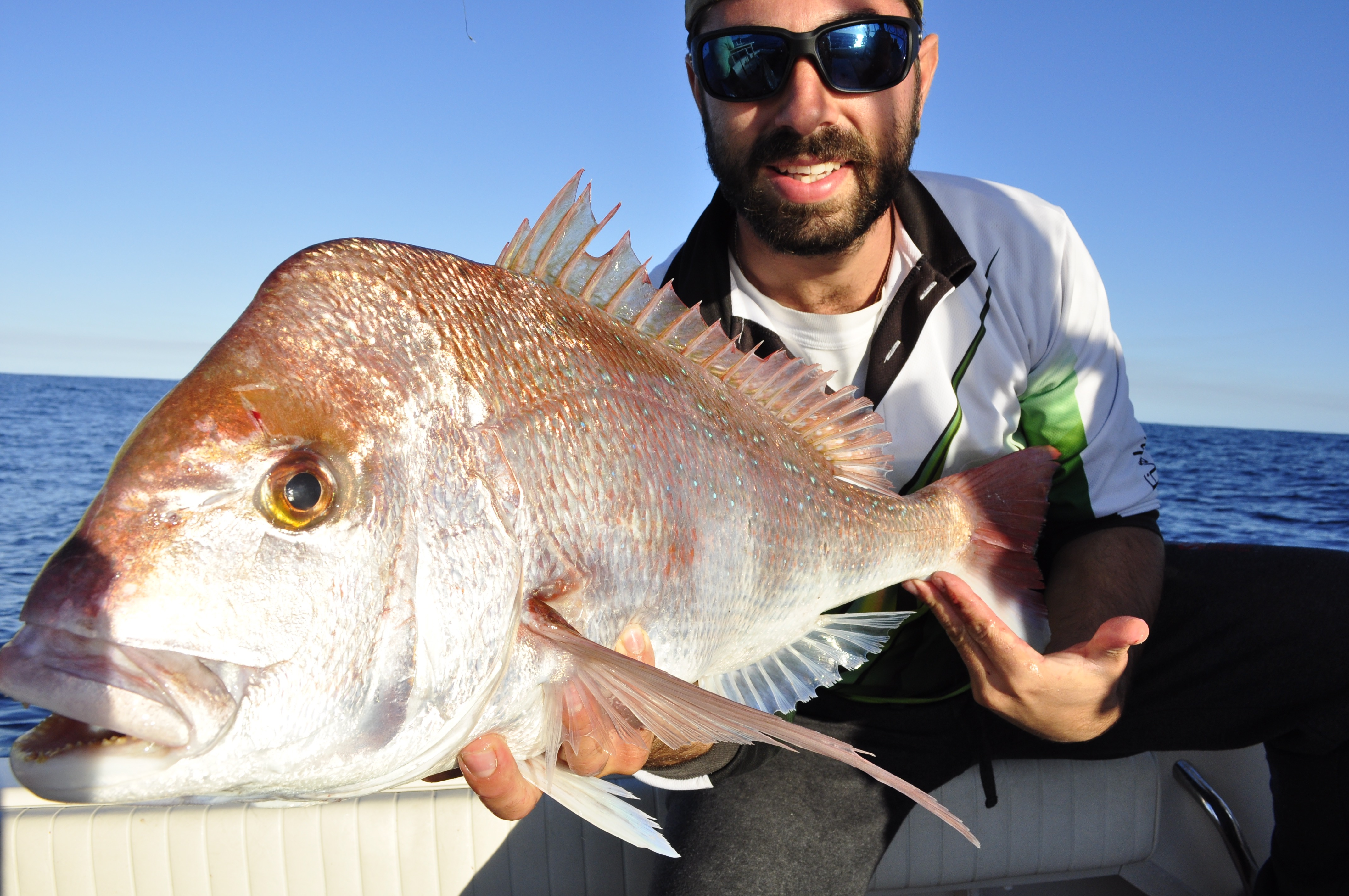 This snapper was boated by Peter about midday using the float line technique described in the article.
