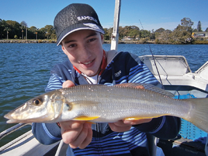 This whiting smashed a blade lure in deep water.