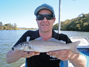 Jerome with one of the many whiting he nabbed during a hot trolling session.