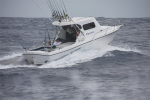 Smithy's Fishing Charters