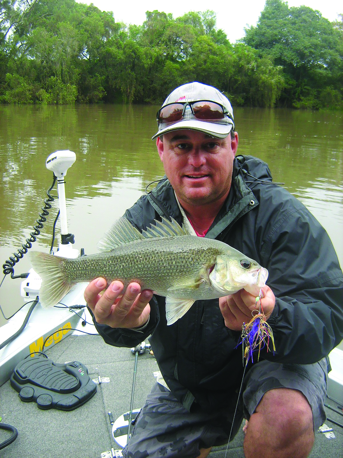 Adrian Melchoir landed a Richmond River bass on a Bassman Spinnerbait.