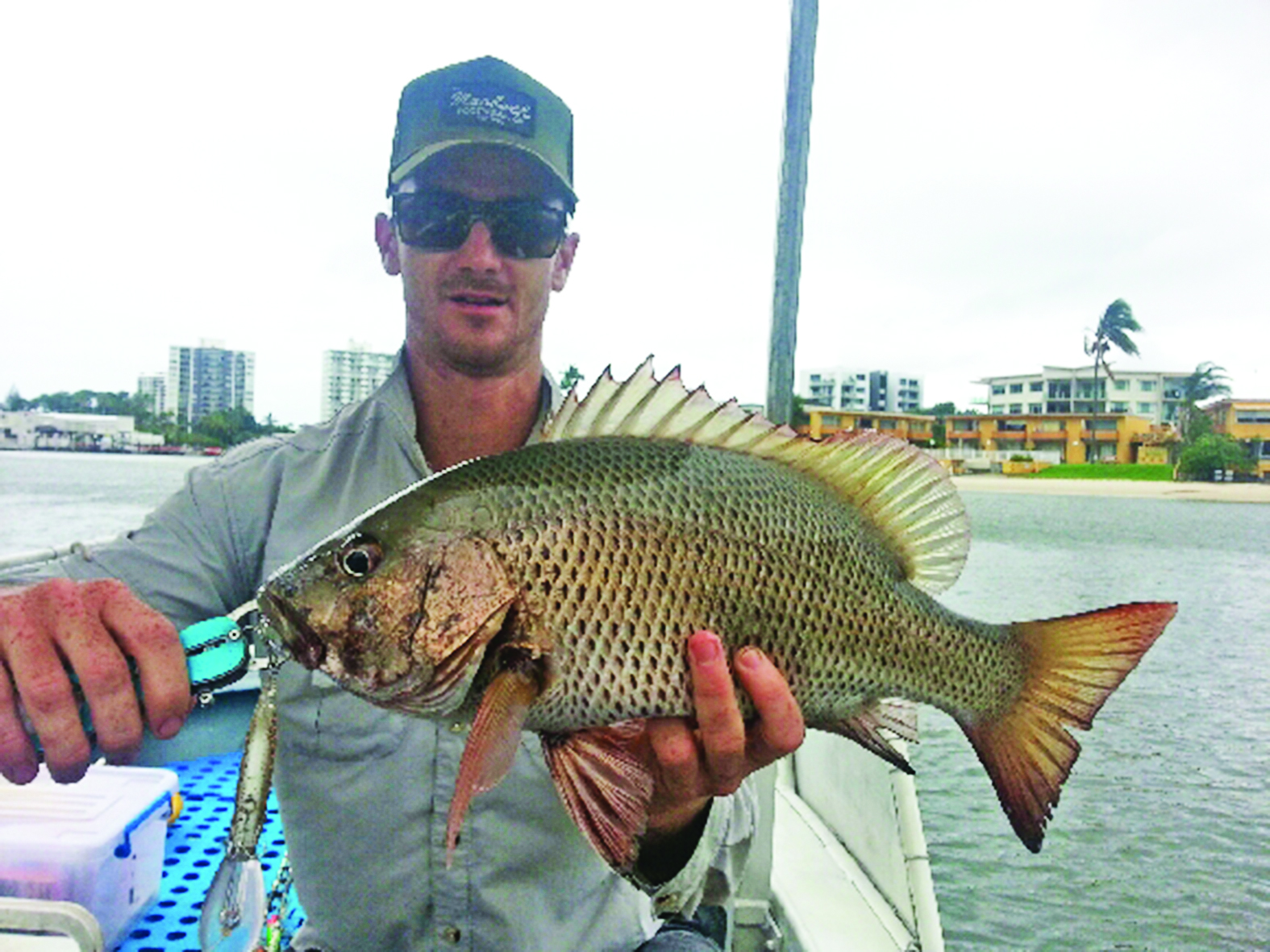 This quality jack fell victim to an Atomic 85DD lure trolled along the bottom over broken reef.