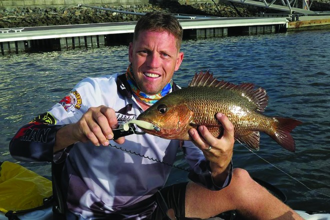 Brad landed a decent red dog from his kayak on the Coomera River. top 10 tips fishing the tweed river
