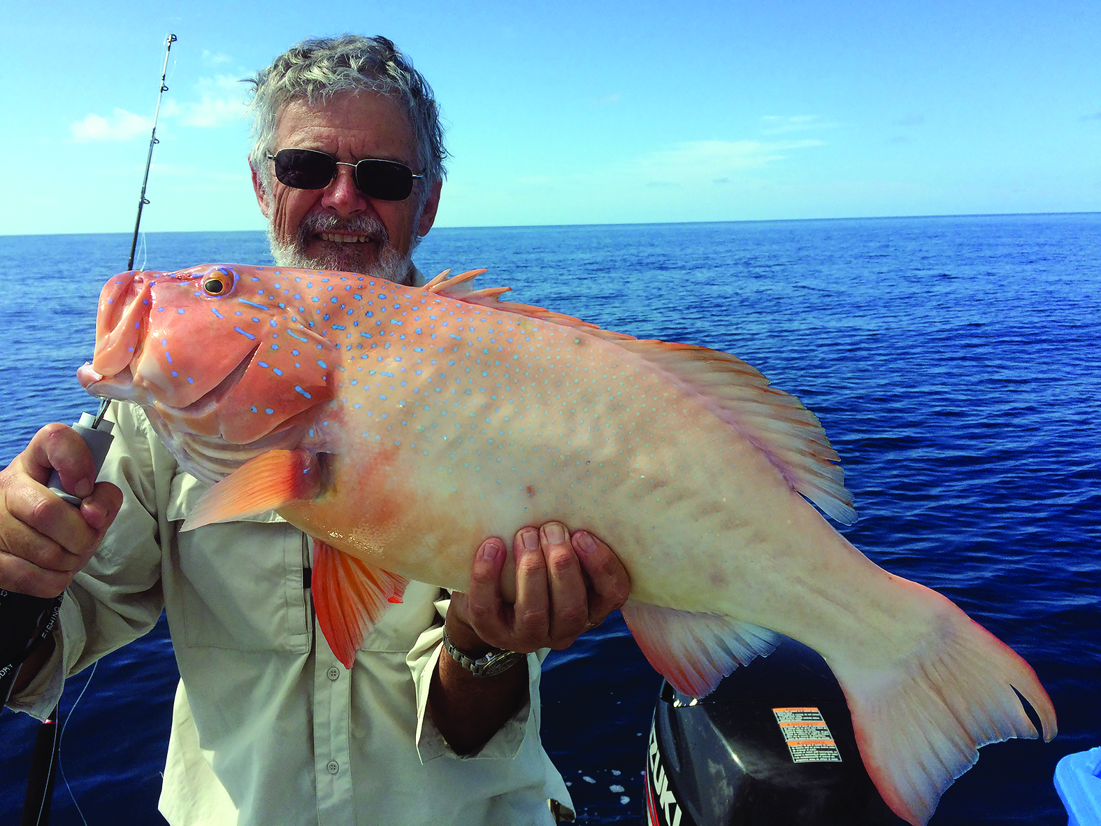 A cracker coral trout boated by Carey.