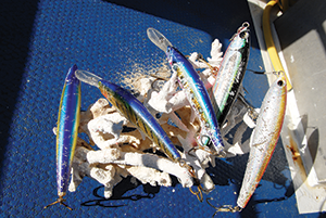 Remote fishing in monster fish locations calls for a large tackle box. Lures that aren't taken back to the reefy bottom are usually well and truly scared by big fish with big teeth.