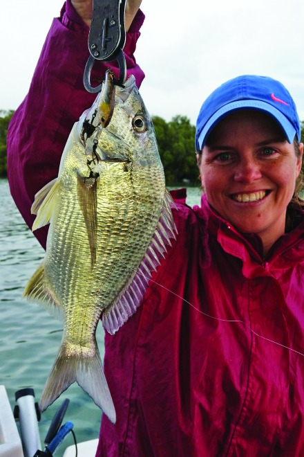 Bream are a common by-catch while trolling small hard-bodied lures for flathead.