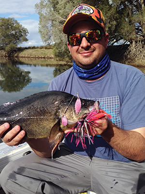 The author with a dark golden perch captured on a Last Cast Spinnerbait.