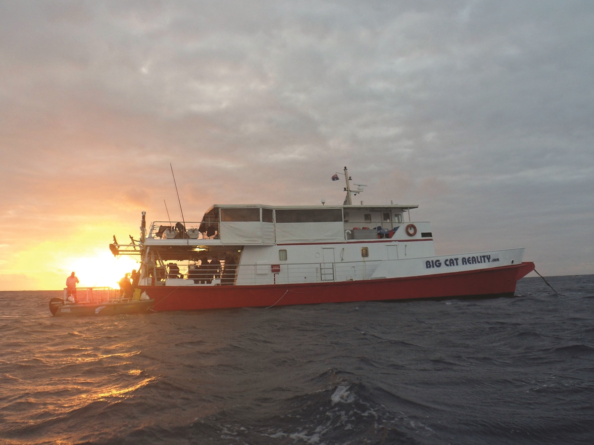 A quick snap of the Big Cat mother ship as the sun faded on the last day at Wreck Reefs. Such a great vessel.