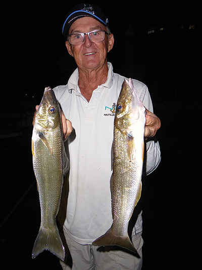 The author with a couple of cracker night-time whiting from the Nerang River.